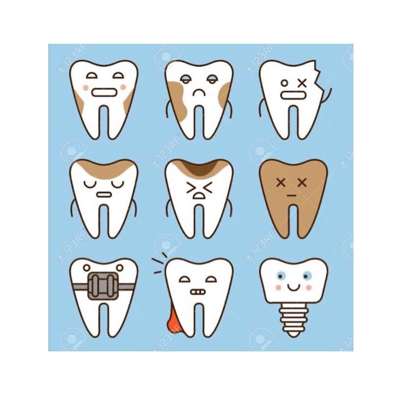 歯科検診お待ちしております🦷